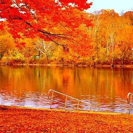 Marla McPherson - Autumn Reflections