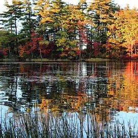 Sandra Huston - Autumn Reflections on Tacoma Lakes