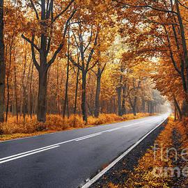 Xenia Chowaniec - Autumn road