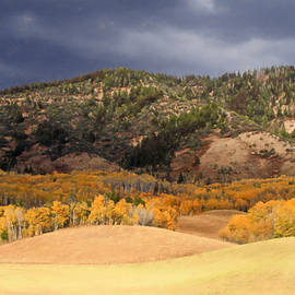 Donna Kennedy - Autumn Rolling Hills in Wyoming