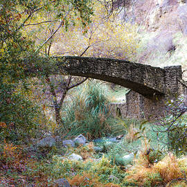 Jiayin Ma - Autumn Scenery with Stone Arch Bridge