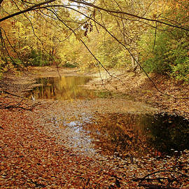 Debbie Oppermann - Autumn Serenity