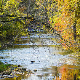 Brian Wallace - Autumn Stream Reflections