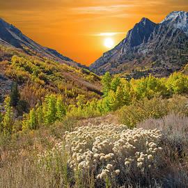 Lynn Bauer - Autumn Sunset at McGee Creek