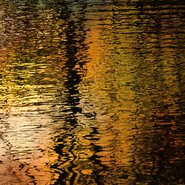 Richard Andrews - Autumn Sunset