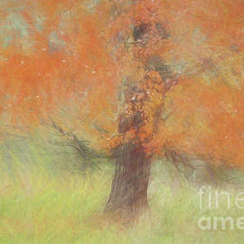 Geraldine DeBoer - Autumn Tree # 1