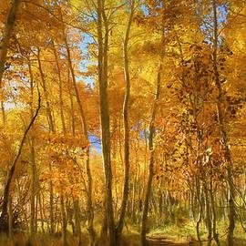 Donna Kennedy - Autumn Walk Among the Aspens