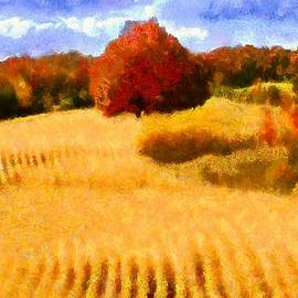 Caito Junqueira - Autumn Wheat Field