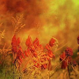 Theresa Campbell - Autumn Wonders