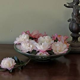 Denise Clark - Autumn Camellias.