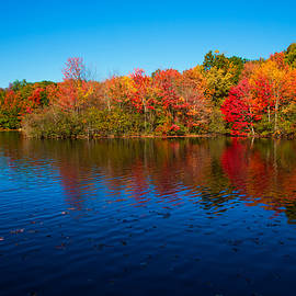 Karol  Livote - Autumns Colors