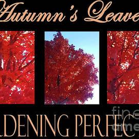 Gardening Perfection - Autumn