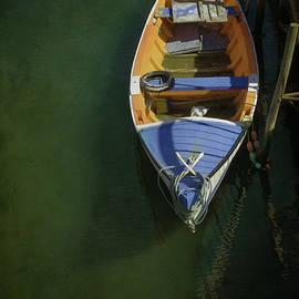 Aveiro Boat - Carlos Caetano