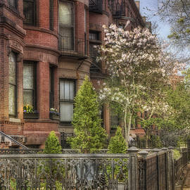 Joann Vitali - Back Bay Boston Brownstones in Spring