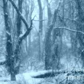 Rick Maxwell - Backwoods Snow