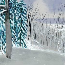 David Bartsch - Backyard snow