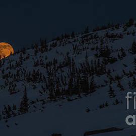 Benjamin Reed - Bad Moon Rising