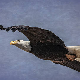 Wes and Dotty Weber - Bald Eagle on Rice Paper D7302