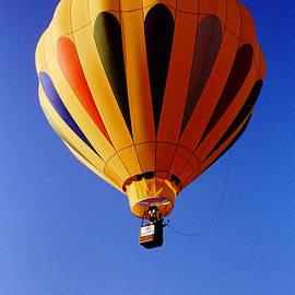 Gary Gingrich Galleries - Balloon-2775
