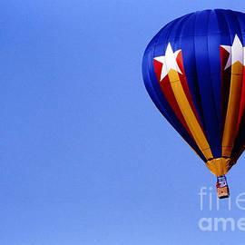 Gary Gingrich Galleries - Balloon-2782