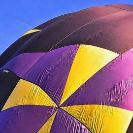 Allen Beatty - Balloon Fantasy 36
