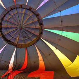 Allen Beatty - Balloon Fantasy 39