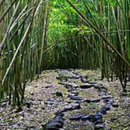 Bamboo Mana - Sean Davey