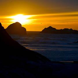 Michele  Avanti - Bandon Beach Solstice Sunset