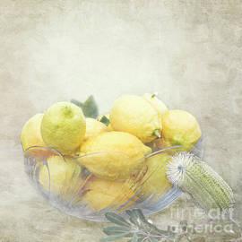 Linda Lees - Banksia and Lemons