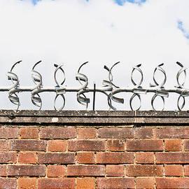 Barbed wire - Tom Gowanlock