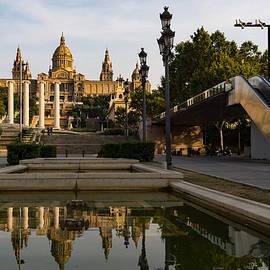 Georgia Mizuleva - Barcelona Street Glow - Golden Light Reflections on Avinguda de la Reina Maria Cristina