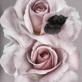 RC deWinter - Barely Blush