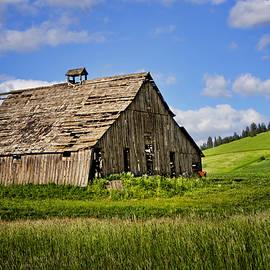 Nikolyn McDonald - Barn #1 - Palouse - Washington