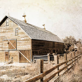 Ann Powell - Barn And Fence Sepia -textured photo art