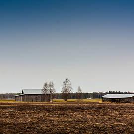 Jukka Heinovirta - Barn Houses And Birch Trees
