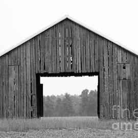 Dwight Cook - barn in Kentucky no 40
