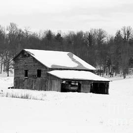 Dwight Cook - Barn in Kentucky no 51