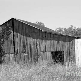 Dwight Cook - Barn in Kentucky no 63