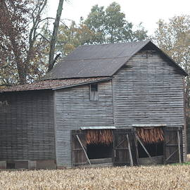 Dwight Cook - Barn in Kentucky no 99