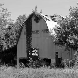Dwight Cook - Barn in TN no 3