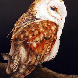 Marie Burke - Barn Owl II