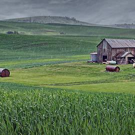 Nikolyn McDonald - Barn - Rainy Day - Palouse