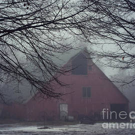 Kathy M Krause - Barnyard Blanketed By Fog