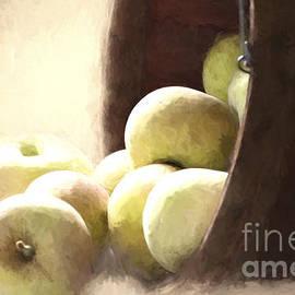 Pam  Holdsworth - Basket of Apples