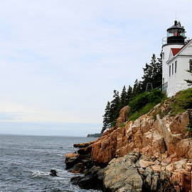Thomas Tuck - Bass Harbor Head