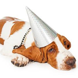 Basset Hound Dog Wearing Silver Party Hat - Susan Schmitz