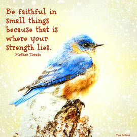 Tina LeCour - Be Faithful In Small Things