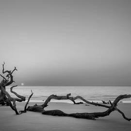 Greg Mimbs - Beach Art in Black an White