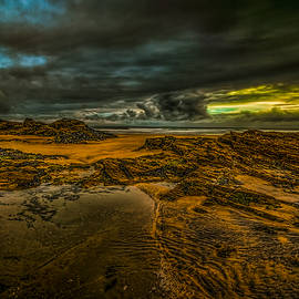 Oliver Kluwe - Beach before the Storm
