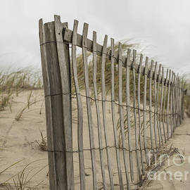Beach Fence - Juli Scalzi